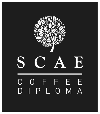 scae coffee diploma